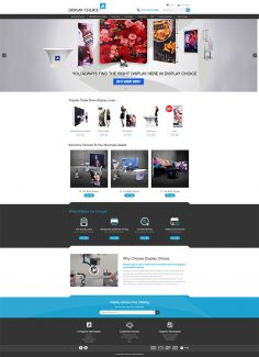 DISPLAY CHOICE WordPress 官网